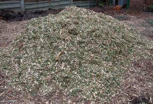 Mulch ready to be spread on the garden